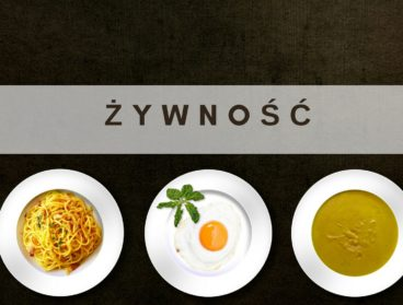 zywnosc-s-s-p-z-novel-food